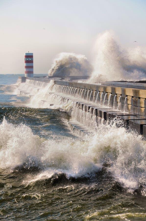 击中海岸的强的波浪 免版税库存图片