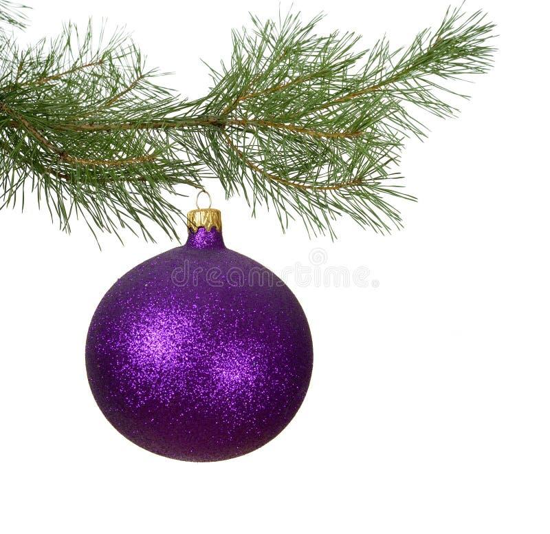 中看不中用的物品分行圣诞节紫罗兰 免版税库存图片