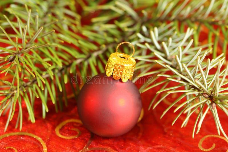 Download 中看不中用的物品圣诞节 库存图片. 图片 包括有 庆祝, 新鲜, 沐浴者, 红色, 云杉, 装饰品, 圣诞节 - 22358569