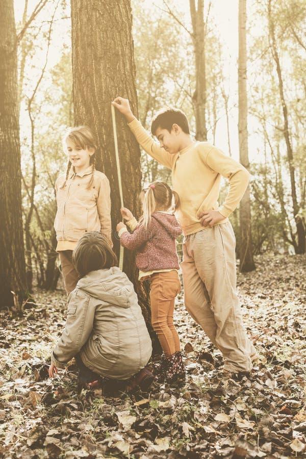 中等小组孩子在公园 免版税库存照片