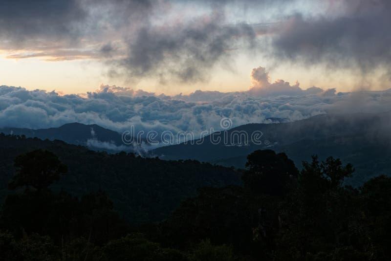 中美洲多云森林-在Los Quetzales,对原始的绿色多云森林和蓝色的美丽的景色的哥斯达黎加风景 免版税库存照片