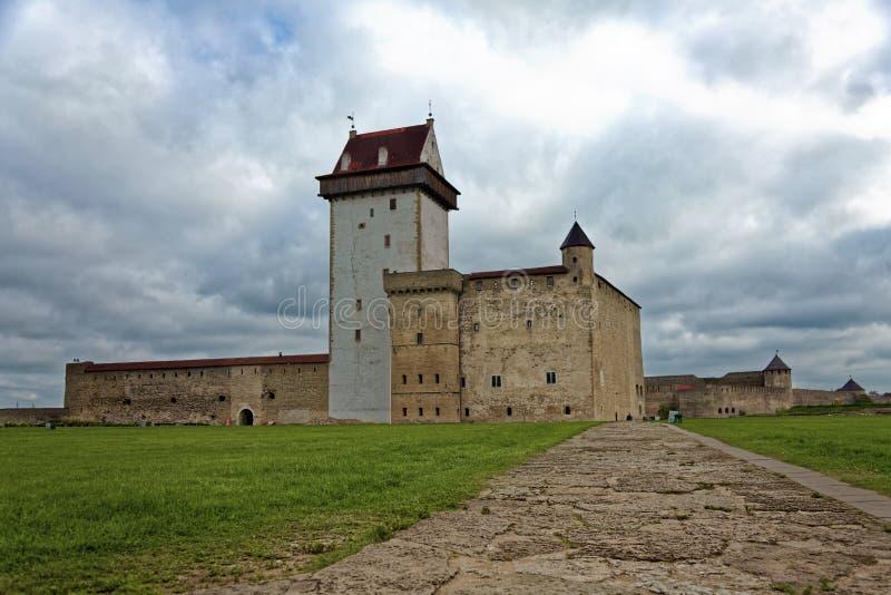 中部在纳尔瓦,爱沙尼亚变老赫尔曼城堡 库存照片