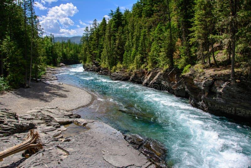 中间叉子扁平头的河在冰川国家公园,蒙大拿美国 免版税库存图片