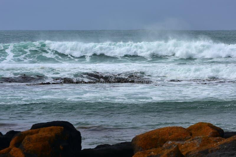 击中Griffiths海岛的海岸强的波浪在维多利亚 库存图片
