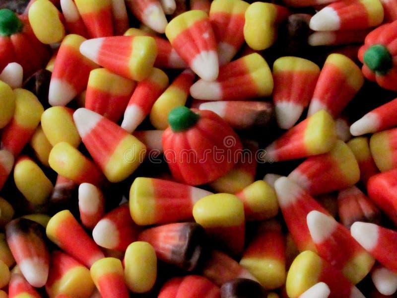 丰盛糖味玉米和南瓜 免版税库存照片