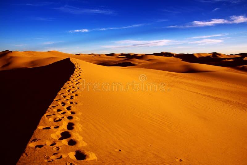 巴丹吉林沙漠 图库摄影