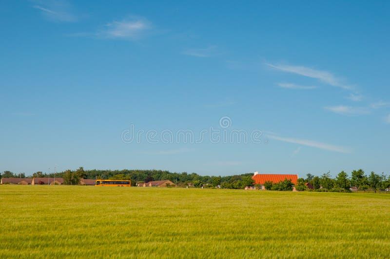 丹麦农业风景 免版税图库摄影