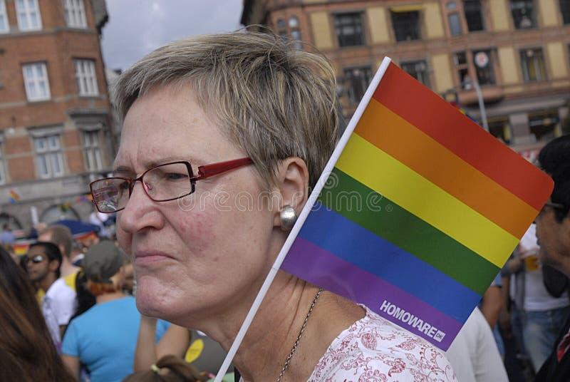 丹麦同性恋者女同性恋者自豪感 免版税库存图片