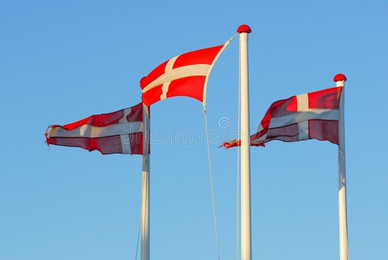 丹麦旗子Dannebrog 免版税图库摄影