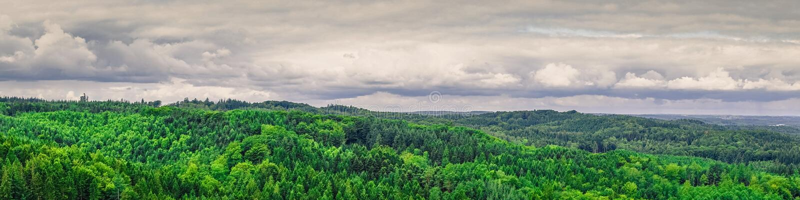 从丹麦的全景风景 库存照片