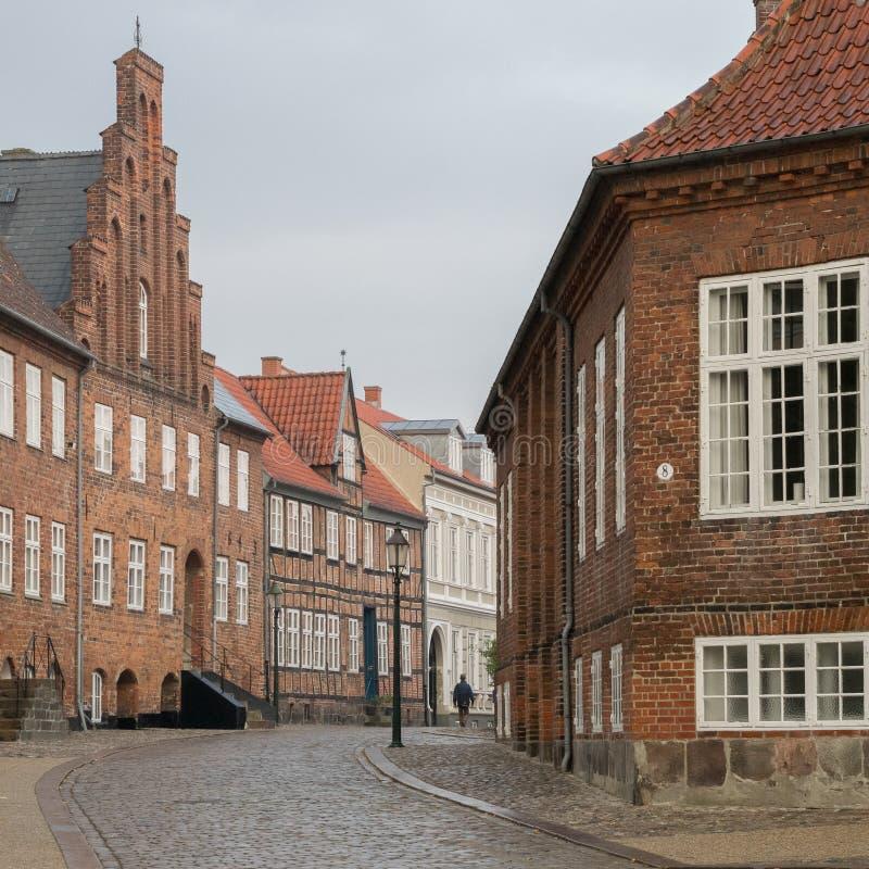 丹麦老大厦建筑学 免版税库存照片