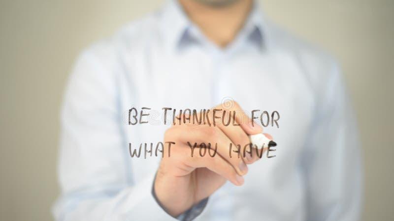 为什么是感激的您有,在透明屏幕上的人文字 库存照片