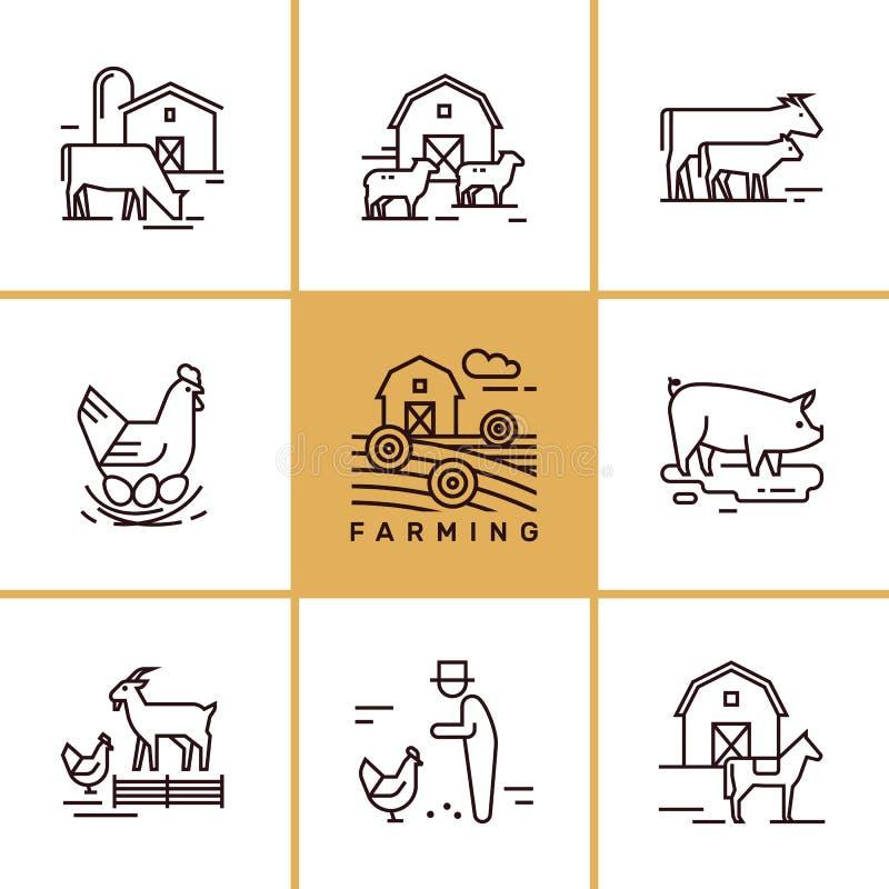 为例证是伟大的传染媒介套种田和牲口,infographics 库存例证