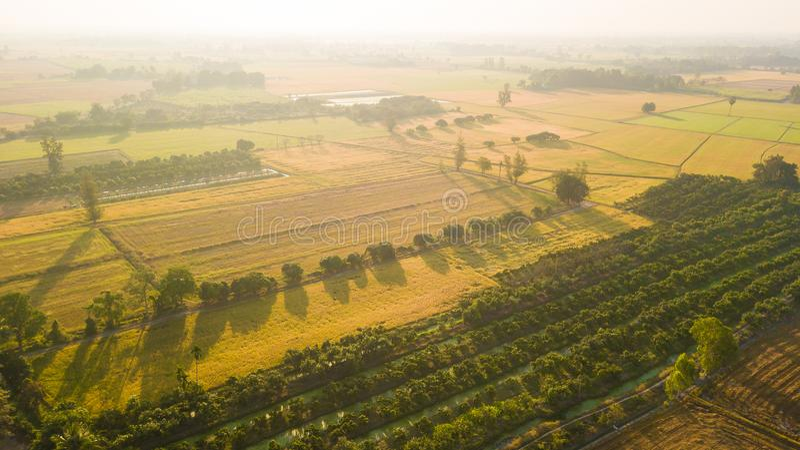 为准备种子或plantin的领域土壤改良 免版税库存图片