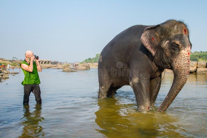 为大象照相的游人 免版税库存照片
