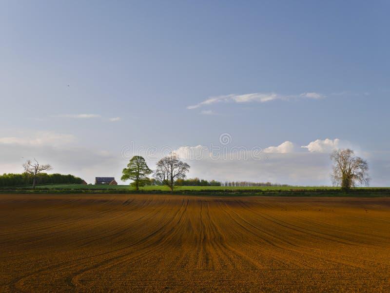 为播种准备的庄稼领域风景 库存图片