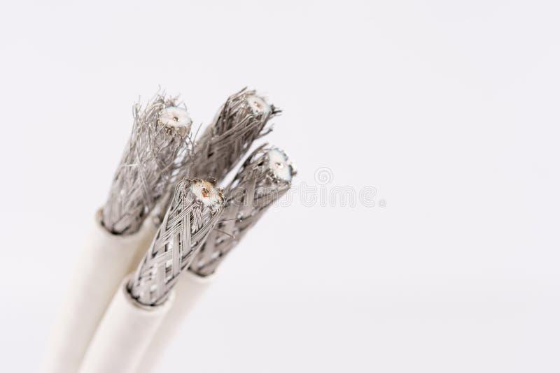 为数字式电视,有线电视,在白色的数据缆绳缚住 免版税库存图片