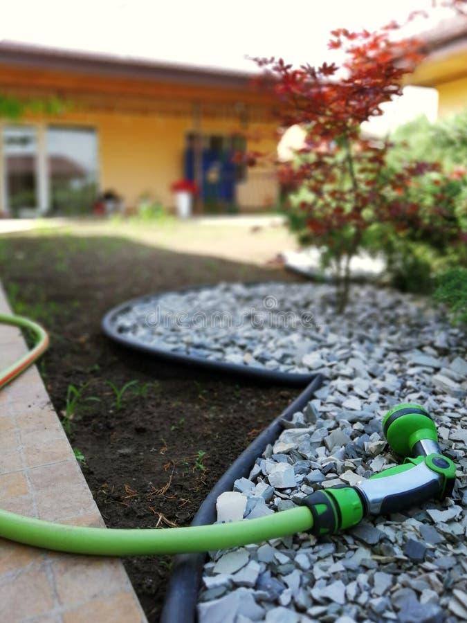 为浇灌和关心的园艺工具 免版税图库摄影