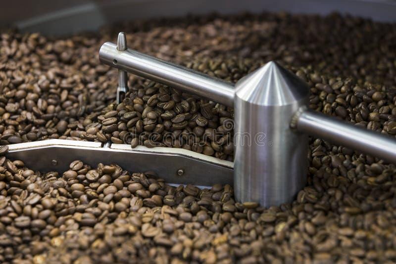 为烤咖啡豆加工 免版税库存照片