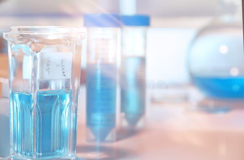 为病理组织学的工具,切片检查法组织的, rask固定小瓶 库存图片