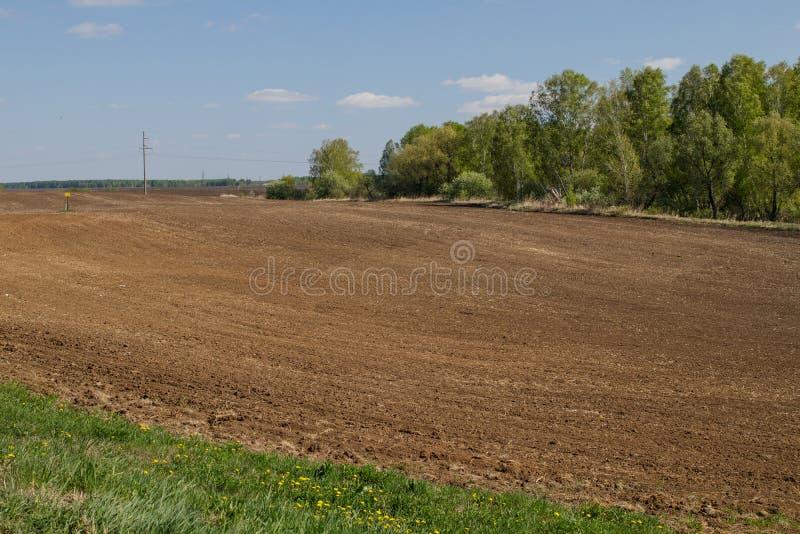 为种植农作物准备的被犁的农业领域在西伯利亚,俄罗斯 图库摄影