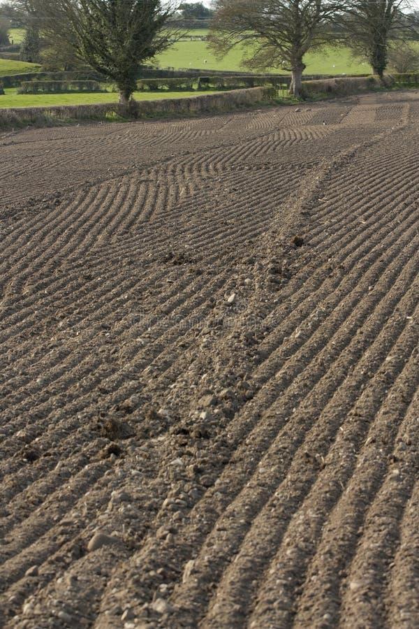 为种植准备的庄稼域 图库摄影