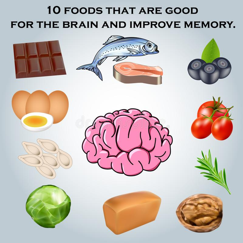 为脑子是好并且改进我的10食物 库存例证