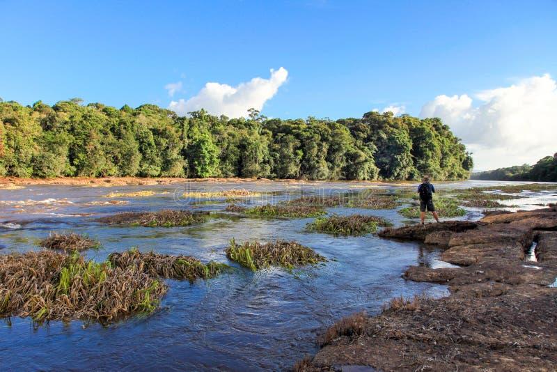 为Kaieteur秋天的河东部Berbice前面的游人,圭亚那照相 瀑布是一个最美丽 库存照片
