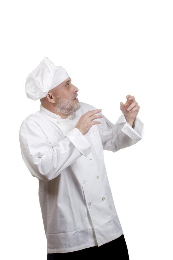 主厨纵向 库存图片