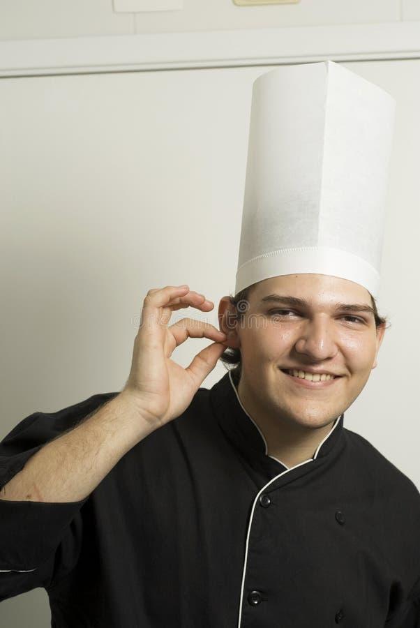 主厨耳朵藏品 库存图片