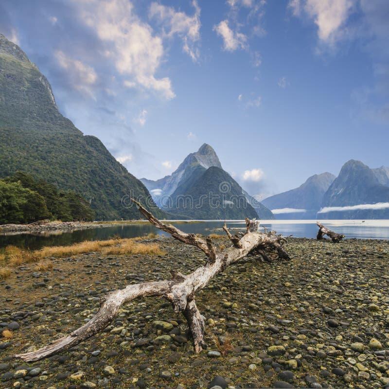 主教峰顶和Milford Sound新西兰 免版税库存照片