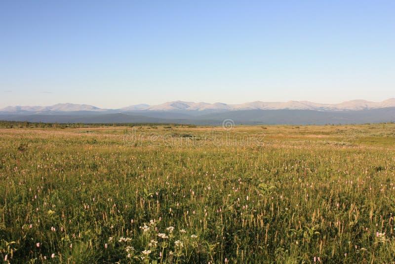主要乌拉尔土坎的看法从Kvarkush高原的 免版税库存图片