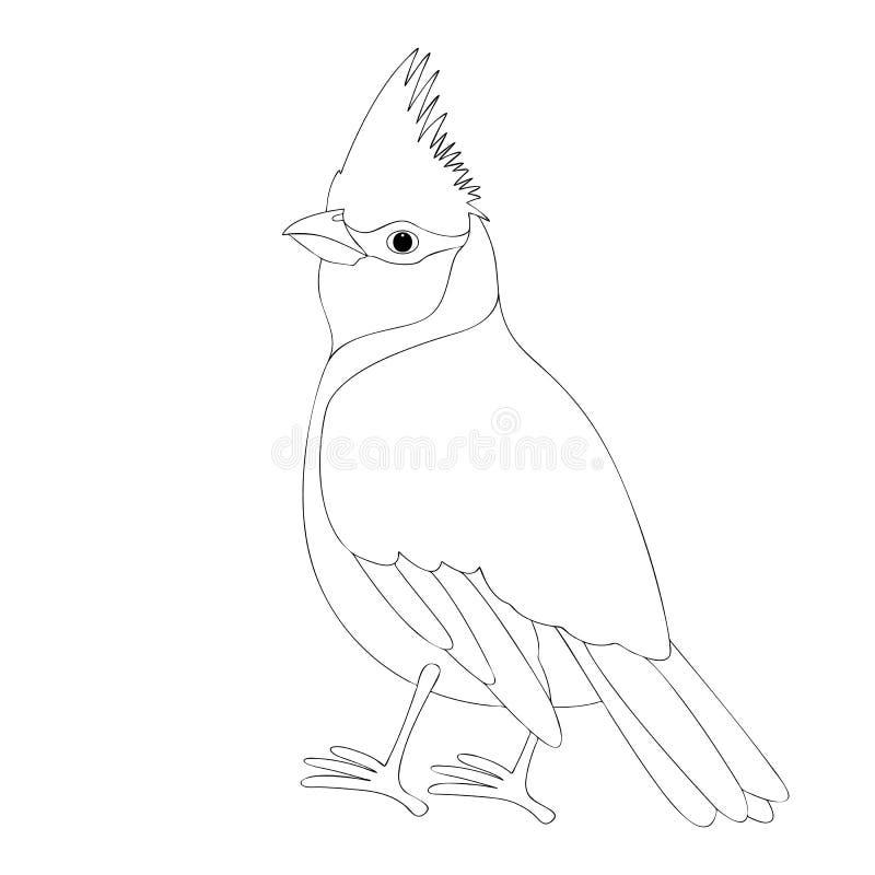 主要鸟传染媒介例证彩图 向量例证