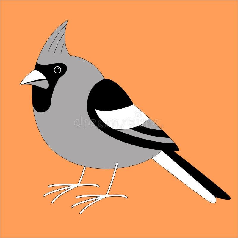 主要鸟,传染媒介例证,排行凹道,外形 皇族释放例证