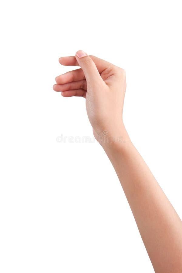 举行一些象一个空插件的妇女美好的手被隔绝  免版税库存照片