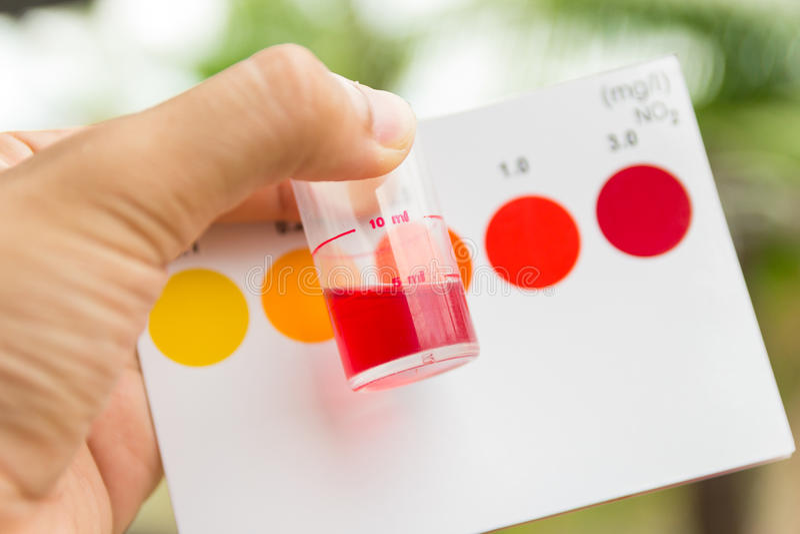 Download 举行亚硝酸盐价值测试的手 库存图片. 图片 包括有 藏品, 评定, 的treadled, 解决方法, 科学家 - 62529319