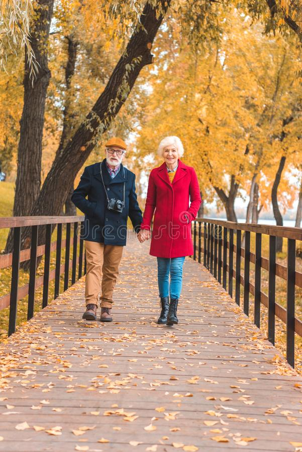 举行手和走的愉快的资深夫妇 免版税库存照片