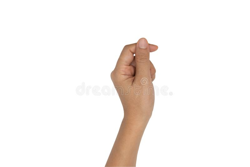 举行某事的手在白色隔绝了 图库摄影
