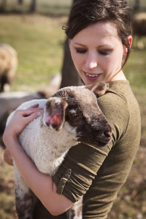 举行羊羔,动物喜欢和动物保护的妇女 免版税库存照片