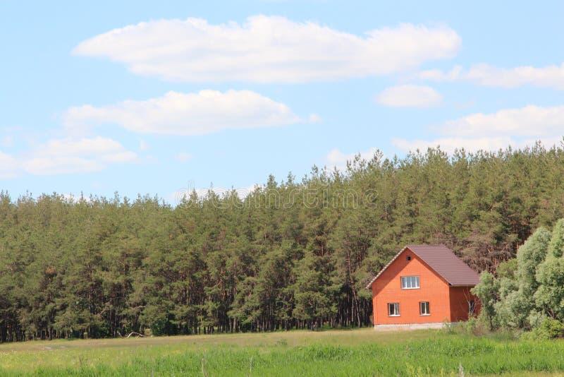 之家在森林 图库摄影