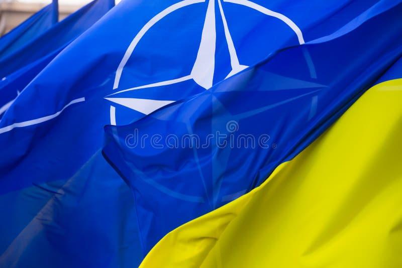 乌克兰和北约国旗  免版税图库摄影