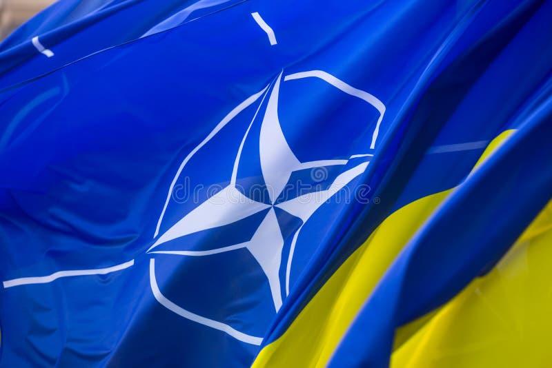 乌克兰和北约国旗  图库摄影