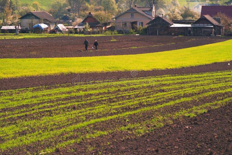 乌克兰的肥沃土地 免版税库存图片