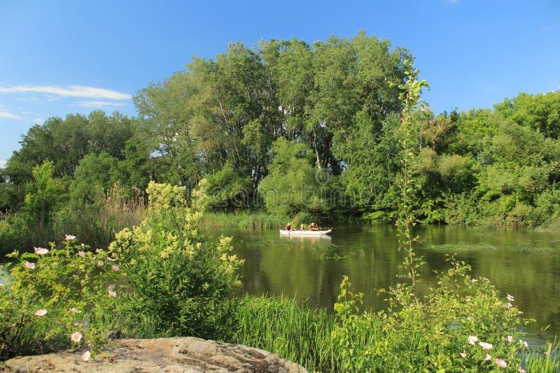 乌克兰美丽自然 库存照片