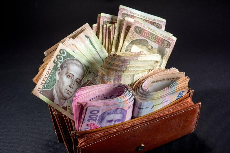 乌克兰金钱在钱包里 图库摄影