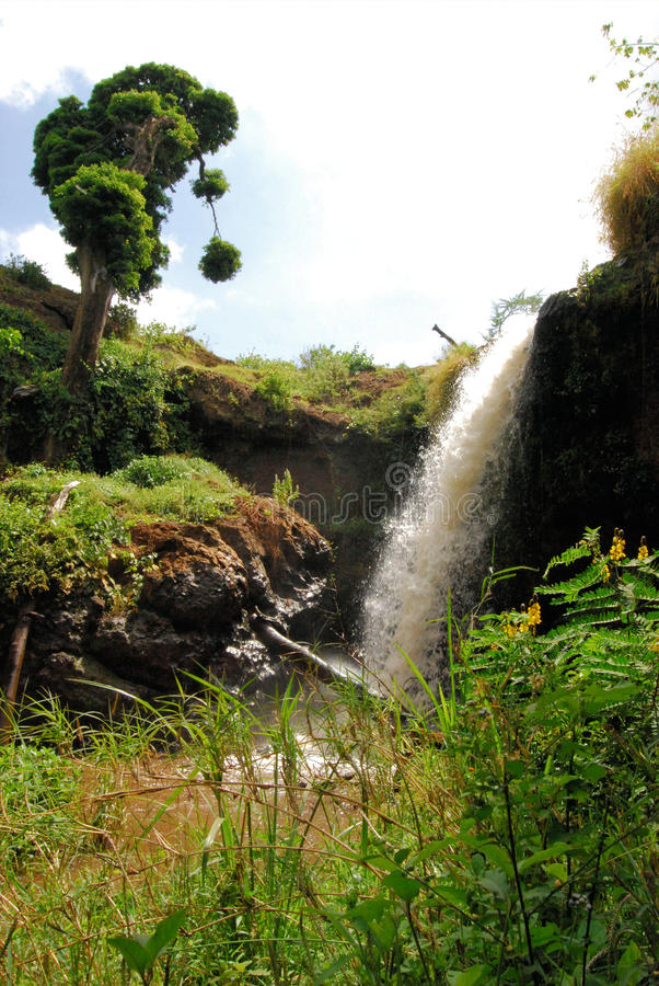 乌干达瀑布 库存图片