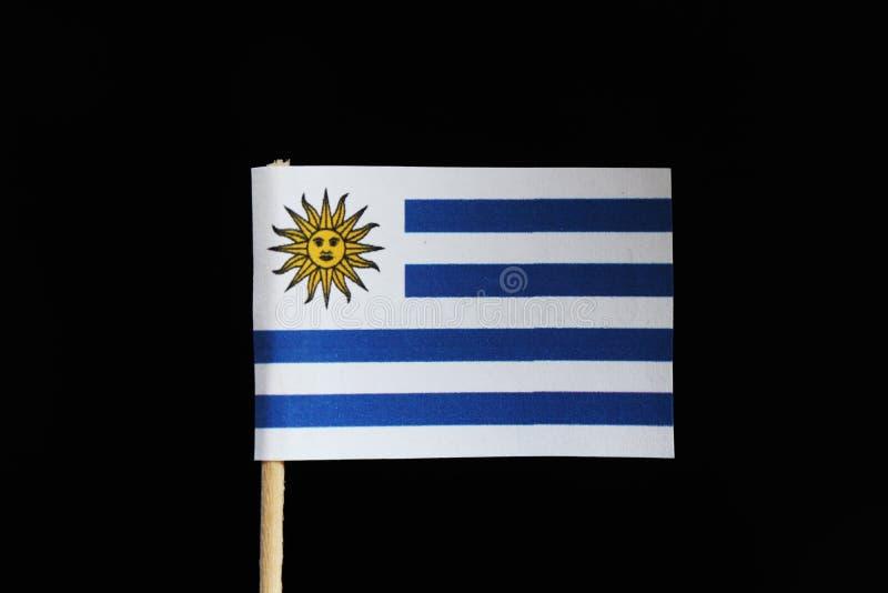 乌拉圭的一面原始和正式旗子牙签的在黑背景 包括白色供选择w九水平的条纹  免版税库存图片