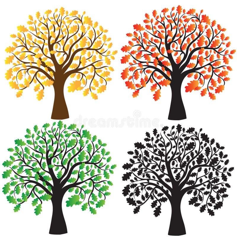 乌木叶子四绿色橡木红色黄色 向量例证