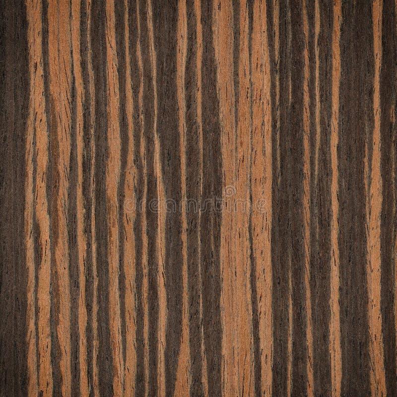 乌木木头纹理 图库摄影
