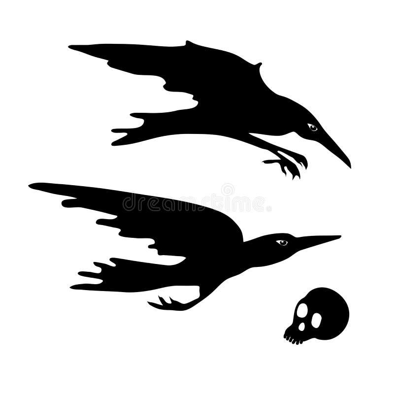 乌鸦和头骨 潜水,飞行乌鸦 万圣夜元素 向量例证